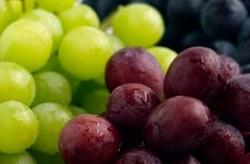 Виноград продлевает жизнь мужчин