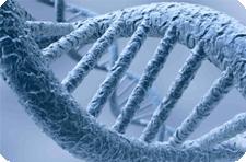 Найден ген отвечающий за депрессию