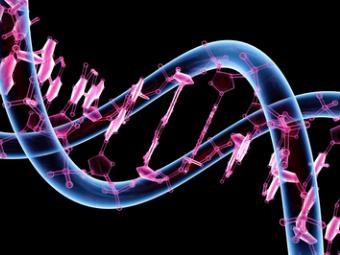 Австралийцы выявили сотни генетических маркеров для ранней диагностики аутизма