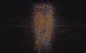 Ученые научились предсказывать связи между нейронами