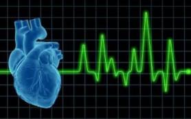 Специалисты обменялись опытом в рамках xviii всероссийского съезда сердечно-сосудистых хирургов