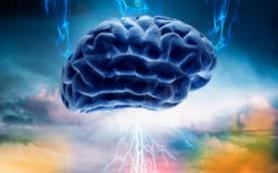 Развенчаны три самых главных мифа о человеческом мозге