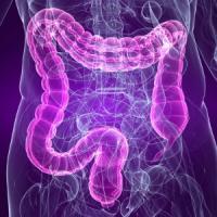 Микрофлора кишечника влияет на риск инсульта