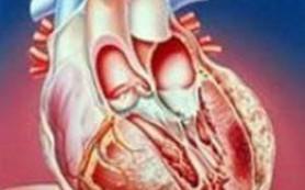 Восемь сигналов нездоровья сердца