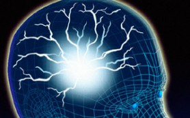 Люди, говорящие на двух языках, имеют больший объём мозга