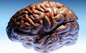 26 марта — День больных эпилепсией