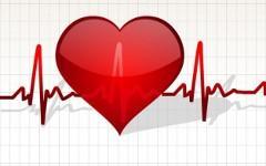 Ученые нашли регулирующие сердечный ритм гены