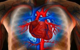 Кардиологи представили первое устройство, избавляющее от сердечной недостаточности