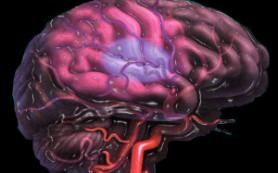 Черепно-мозговые травмы повышают риск инсульта