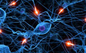 Американцы предложили новую гипотезу болезни Альцгеймера