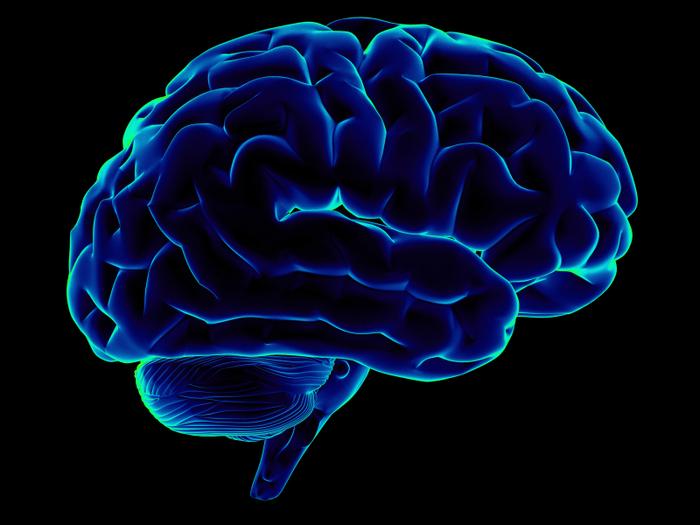 Мозг может нас обманывать