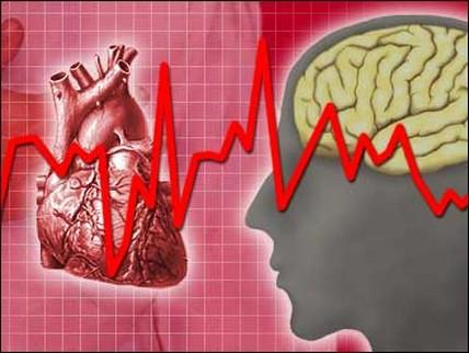 Обнаружены новые специфические факторы риска сердечных приступов