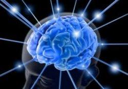 Классическая теория о существовании доминирующего полушария мозга – миф?