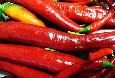 Китайские исследователи узнали, почему перцы «чилли» так полезны для сердца