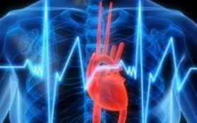 Повышенный уровень холестерина в крови: как не довести до проблем с сердцем?