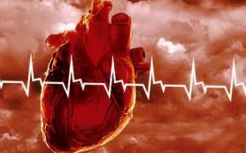 Сердечно-сосудистая система курильщиков восстанавливается в среднем за 8 лет