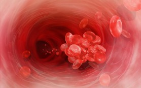 Отмена клопидогрела не связана с повышением риска тромбоза