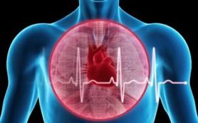 Ссоры вредны для здоровья сердца