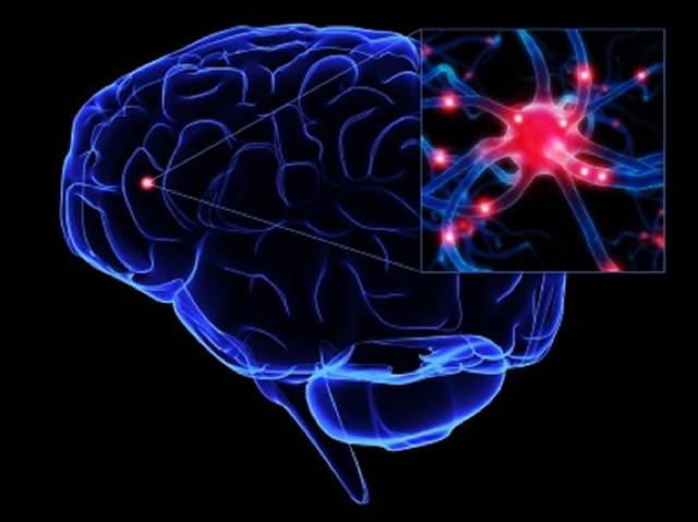 Какие продукты нужны мозгу