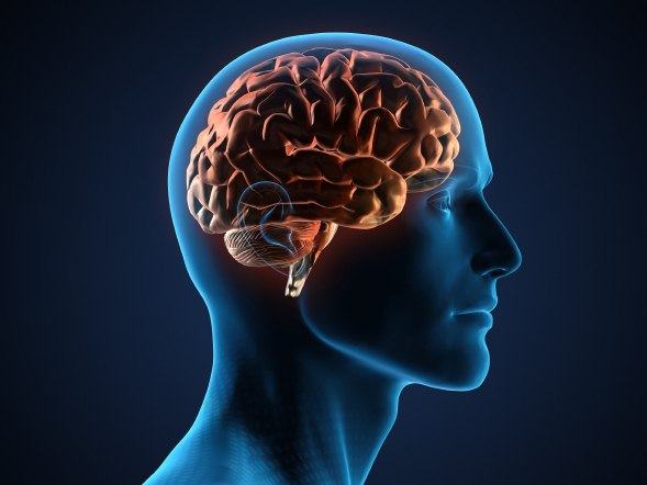 Звуковая память у человека развита хуже зрительной и тактильной
