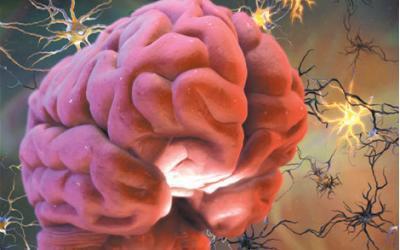 Китайскими учеными найдено новое лекарство от болезни Паркинсона
