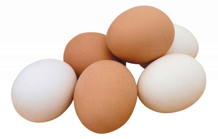 Яйца помогают улучшить когнитивные функции