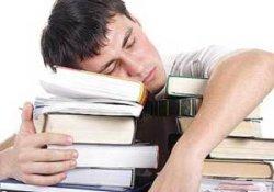 Сон улучшает запоминание новой информации – теперь известно почему