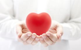 Названы 4 самых вредных для сердца привычки