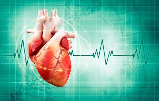 Как защитить сердце в летнюю жару