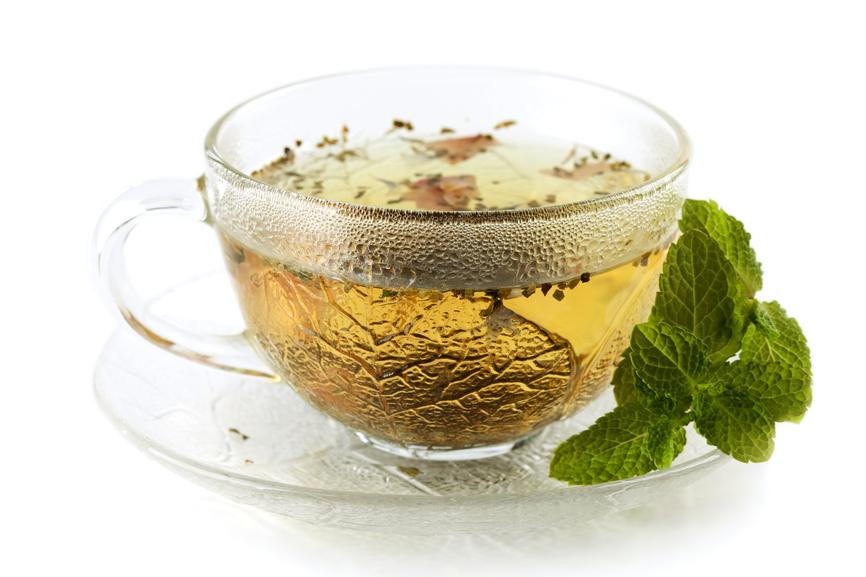Зеленый чай защитит спинной мозг