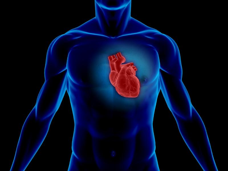 Диета для сердца: самые полезные продукты