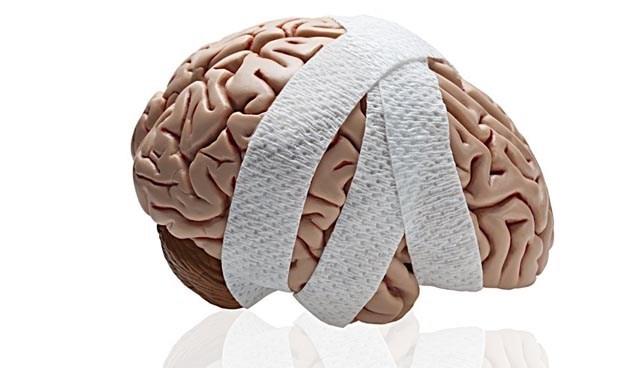 Протестирована методика восстановления тканей мозга после травм