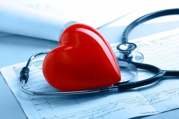 Клетки сердца могут превращаться к клетки сосудов – ученые