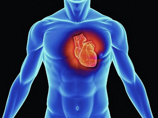 Исследование нашло фактор выживаемости пациентов при сердечном приступе