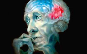 Сырость может вызывать развитие болезни Паркинсона