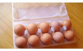 Яйца не являются вредными для сердца, и еще 5 заблуждений о еде, которые вы не знали