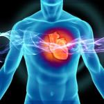Обнаружен терапевтический эффект бета-адреноблокаторов в отношении сердечной недостаточности с сохраненным выбросом