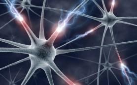Найден новый метод лечения неврологических расстройств