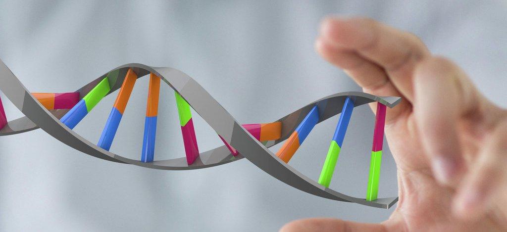 СМИ: ученые обнаружили ген, защищающий от инсульта, инфаркта и мигрени