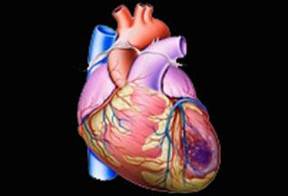 Необструктивная ИБС связана с риском развития инфаркта миокарда и риском смерти