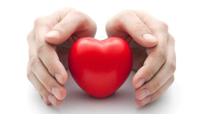 Сердце — это твоя жизнь