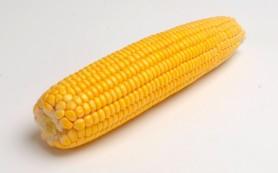 Для защиты сердца и сосудов врачи рекомендуют употреблять кукурузу