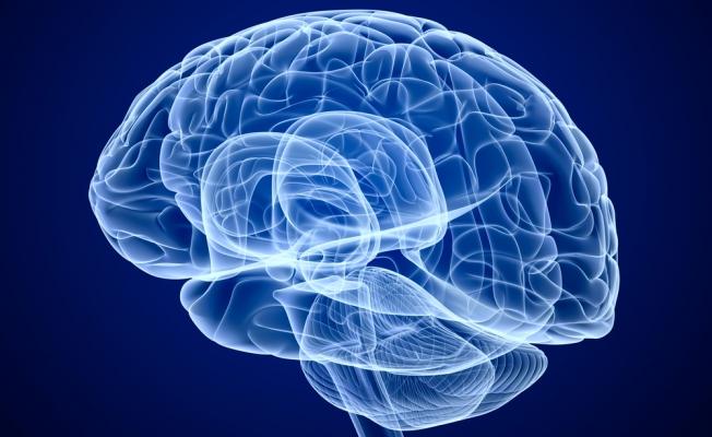 Форма жилого помещения влияет на мозг – исследование
