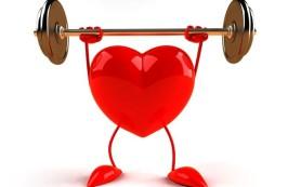 Новое исследование поможет кардиологам подобрать корректный препарат
