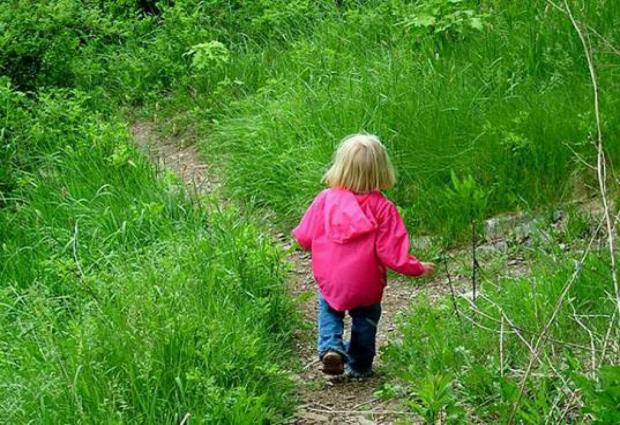 Зеленые насаждения улучшают состояние сердца