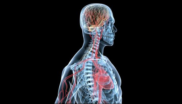 Уже знакомый препарат успешно испытан для поддержания восстановления миелина при рассеянном склерозе