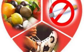 Профилактика заболеваний сердечнососудистой системы