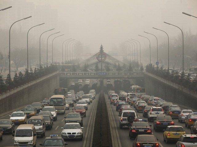 Городской воздух ускоряет старение мозга