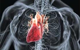 Немного о пороке сердца