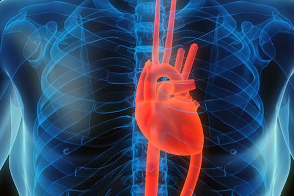 Смертность от сердечно-сосудистых заболеваний в Московской области упала на 16%